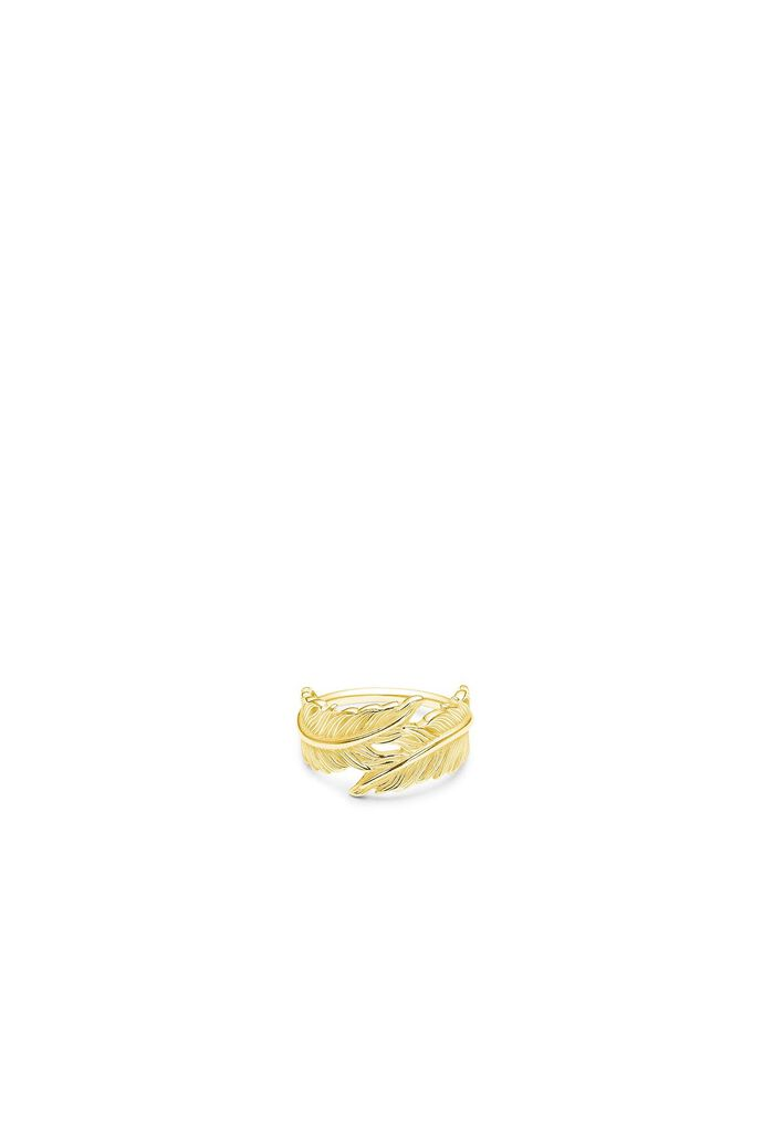 Raven ring IDR009GD, GOLD