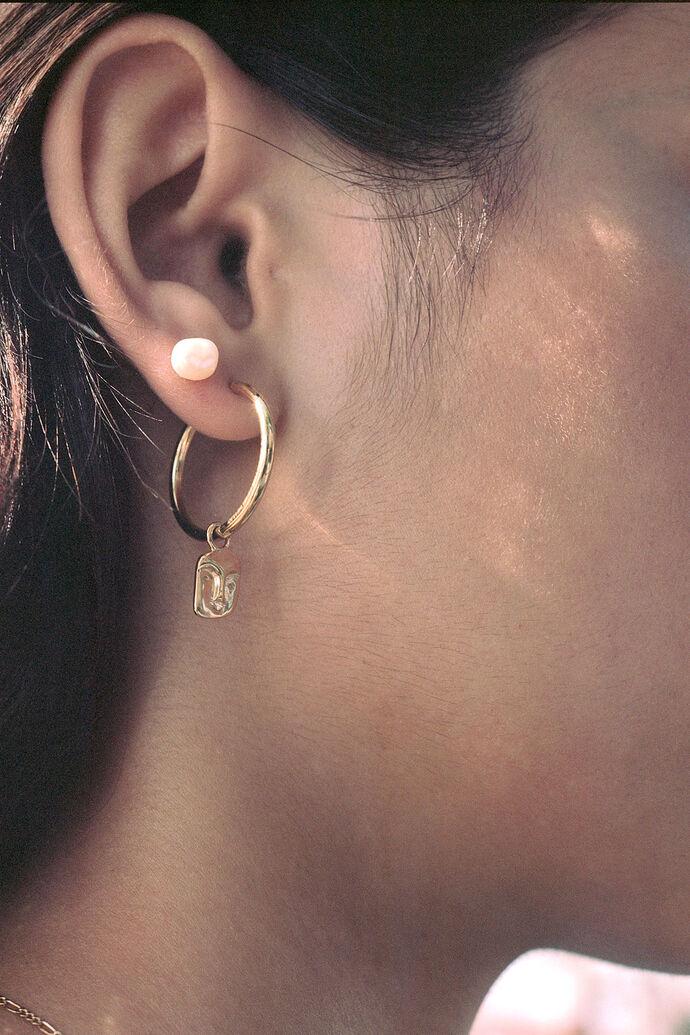 Ray earring 100705YG