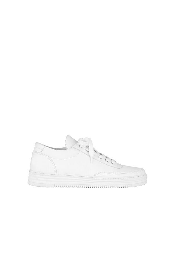 Aspen 7831, WHITE