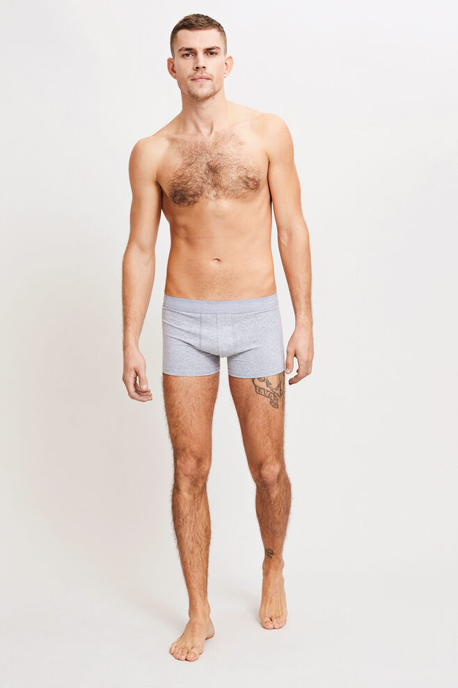 Trunks 3702, LIGHT GREY MEL.