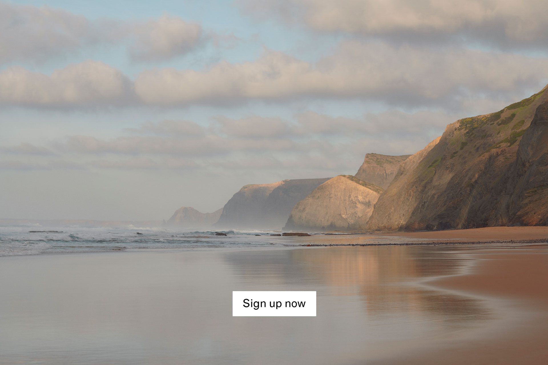 Sign up to our newsletter now